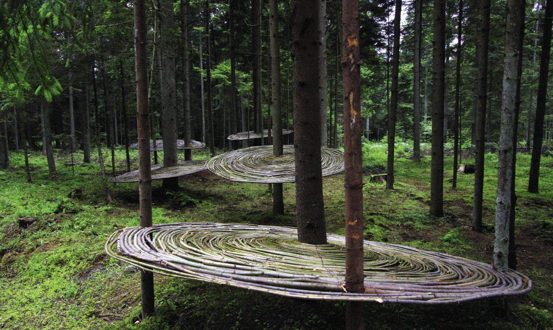 Świat jak drzewo (cz.1)