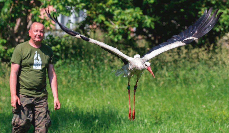 Ornitolog nafroncie
